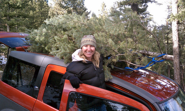 Erin tying the tree down on our element
